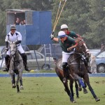 Polo Horse Assn joins with AQHA